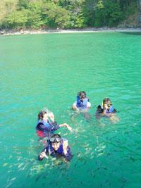 ดำน้ำดูปะการังอีกหนึ่งกิจกรรมดีๆที่ท้องทะเลไทย