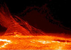 Cecilia Payne พบว่า ดาวฤกษ์ประกอบด้วยไฮโดรเจนเป็นส่วนใหญ่