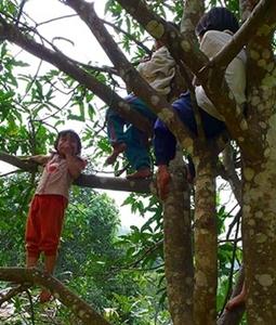 50 อย่างที่เด็กอยากทำก่อนอายุ 11 ปี 9 เดือน /ดร.สุพาพร เทพยสุวรรณ