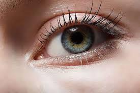 ป่วยเบาหวานเสี่ยงตาบอดสูงกว่าคนปกติ 25 เท่า