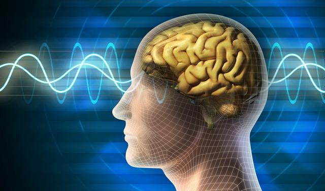 ธรรมะกับสุขภาพ : สมองพัฒนาได้ ด้วยการเจริญสติ (ตอนจบ)