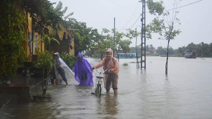 <br><FONT color=#000033>เด็กดีเดินและจูงรถจักรยานลุยน้ำไปเรียนตามปรกติในเมืองโฮยอาน จ.กว๋างนาม ในตอนเช้าวันจันทร์ 30 ก.ย.นี้ หลังฝนตกหนักตลอดทั้งคืนจนถึงเช้า ย่านเมืองเก่าริมแม่น้ำของเมืองมรดกโลกระดับน้ำท่วมสูง 30-40 ซม. สร้างความยากลำบากไปทั่ว สื่อของทางการรายงานว่าจังหวัดชายทะเลตั้งแต่นครด่าหนังขึ้นไปจนถึง จ.เหงะอาน มีคลื่นสูง 3-4 เมตรเข้ากระทบฝั่งตลอดทั้งคืน ไต้ฝุ่นหวูติ๊บมีกำหนดเคลื่อนเข้าฝั่งในบ่ายวันนี้. -- ภาพ: TTO </b>
