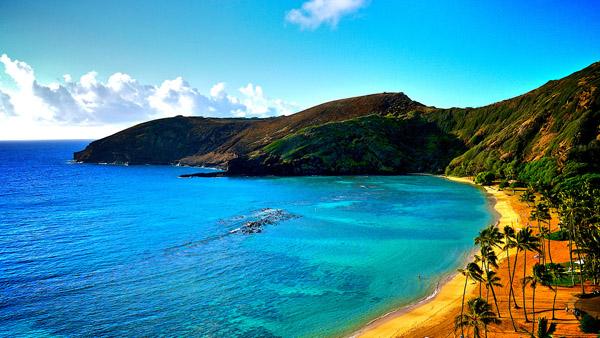 Hawaii (ภาพจาก Hawaii-tourismus.com)