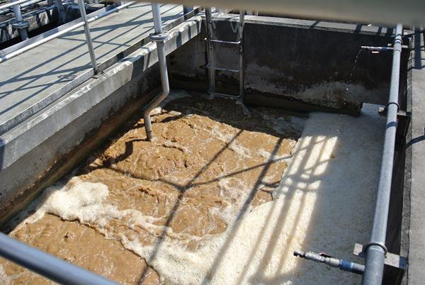 ส่วนบำบัดน้ำเสียในโรงงานสกัดสารสำคัญของมารูเซน