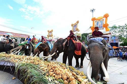 """ททท. ชวนหลงรักประเทศไทย หลงรักช้างใน """"มหัศจรรย์งานช้างสุรินทร์"""""""