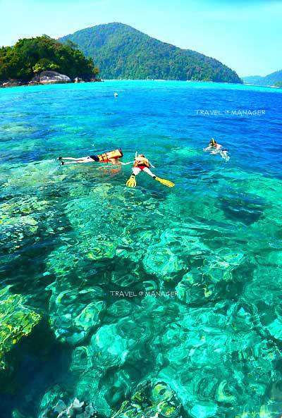 """น้ำทะเลใสแจ๋ว ชวนน่าแหวกว่าย ที่ """"หมู่เกาะสุรินทร์"""""""