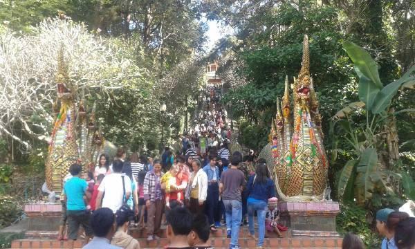 นักท่องเที่ยวไทย-เทศทะลักขึ้นดอยสุเทพ ไหว้พระธาตุประจำปีแพะเนืองแน่น