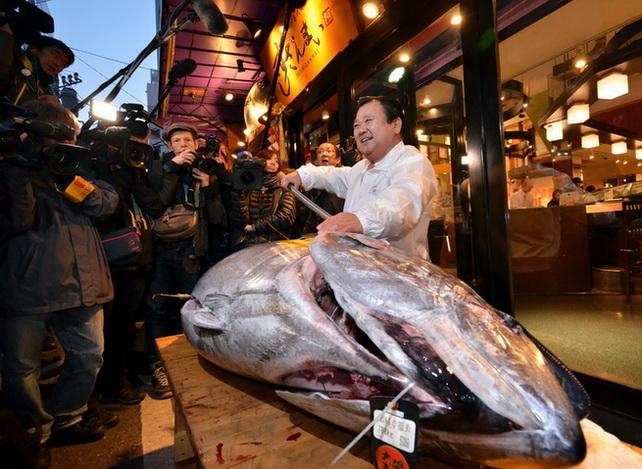 """In Pics : ญี่ปุ่นประมูล """"ทูนายักษ์"""" ครั้งแรกของปี-ราคาหดเหลือแค่ """"ล้านเศษๆ"""""""