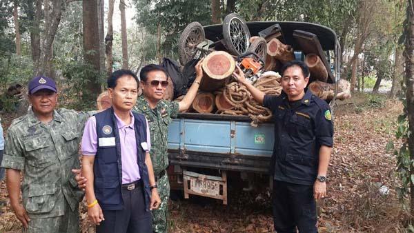 พบไม้พะยูง 13 ท่อนทิ้งไว้ในป่า แต่ไม่พบผู้ต้องหา