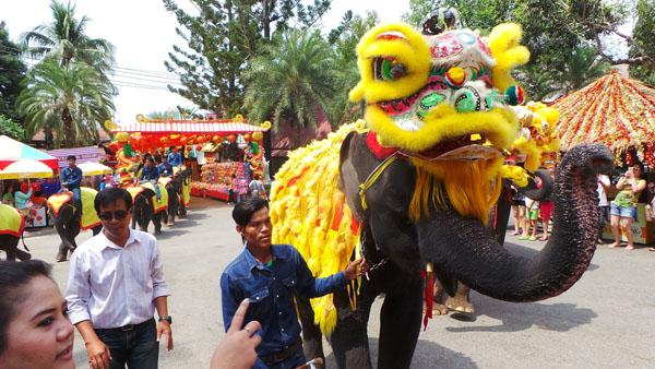 สวนนงนุชพัทยา จัดขบวนช้างเชิดสิงโตยิ่งใหญ่ รับเทศกาลตรุษจีน