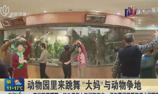 ทีมเด๊นซ์วัยดึกเต้นดิสโก้ป่วนพวกไอ้เข้ไอ้โขงในสวนสัตว์เซี่ยงไฮ้ จนท.สุดทนแจ้งตำรวจ