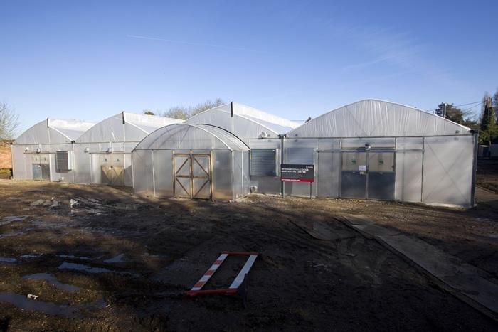 โรงเรือนกระจกภายในศูนย์ควบคุมโกโก้นานาชาติที่อยู่ในอังกฤษ (AFP PHOTO / JUSTIN TALLIS)