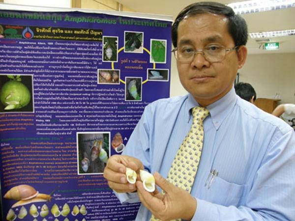 ศ.ดร.สมศักดิ์ ปัญหา ผู้ค้นพบหอยมรกตคนแรกของประเทศไทย