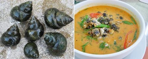 ภาพประกอบ www.aquatoyou.com และ www.topicstock.pantip.com