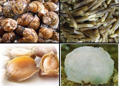 ภาพประกอบwww.aquatoyou.com,www.ranthong.comและwww.swaiseafood.com