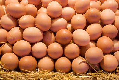 หมดเวลาทอง! สมาคมฯ ไข่เตือนผู้บริโภค หลังสงกรานต์ไข่แพงขึ้น