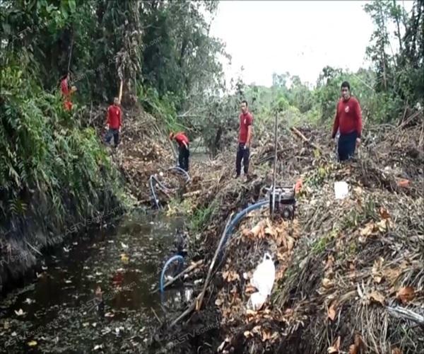 ดับได้แล้วไฟป่าพรุโต๊ะแดง จ.นราฯ พบเสียหายกว่า 700 ไร่ เตรียมสืบหาผู้ทำผิดมาลงโทษ (ชมคลิป)
