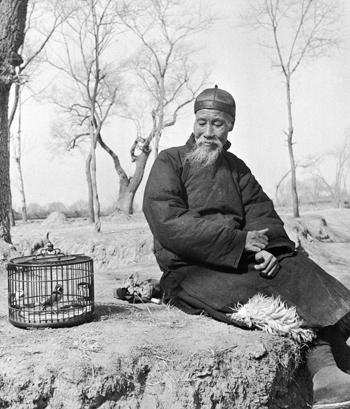ชายชราจีน กับกิจกรรมผ่อนหลังจากเลิกงาน อาทิ เลี้ยงนก (ภาพเฮดดา มอร์ริสัน)