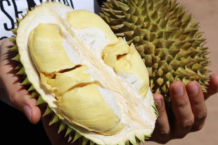 ทุเรียนอร่อยจากสวนหลงรักไทย