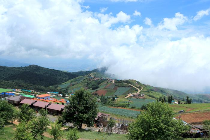 ภูทับเบิก หน้าฝนยามเมื่อม่านเมฆหมอกลอยปกคลุม