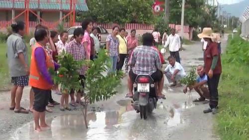 ชาวบ้านนาป่า ชลบุรี ร่วมปลูกต้นไม้บนถนนที่พังมานานกว่า 10 ปี ไม่มีใครช่วยซ่อม