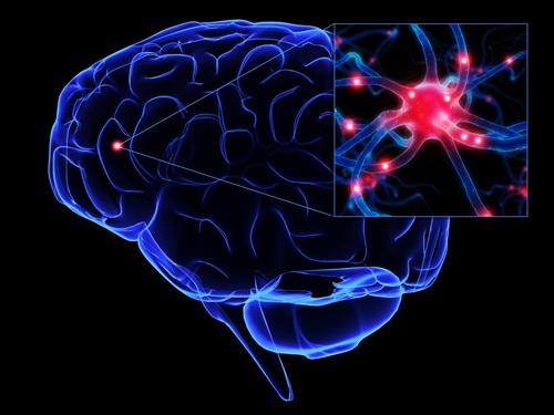 คนไทยป่วยโรคระบบประสาทและสมองเพิ่มขึ้น