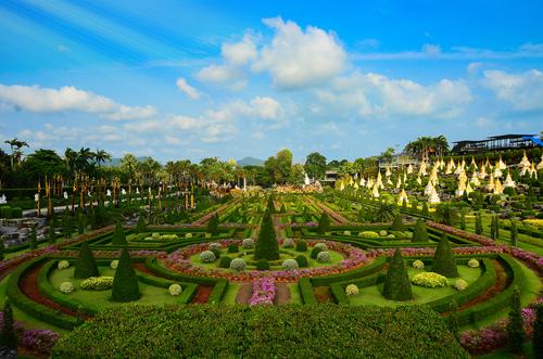 พื้นที่ความสวยงามในสวนนงนุช