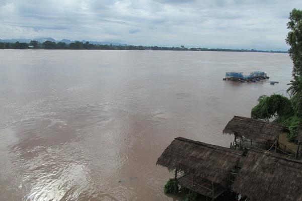 น้ำโขงที่เพิ่มขึ้นรวดเร็ว กระทบเกษตรกรเลี้ยงปลาในกระชัง