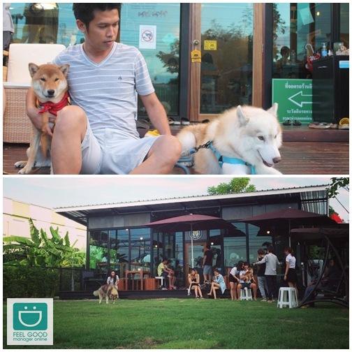 'Inu Machi Cafe' คาเฟ่สุดชิลล์เอาใจคนรักชิบะ!
