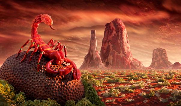 Red Scorpion แมงป่องพริก