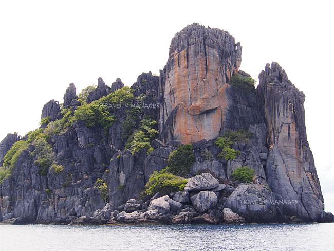 ฝ่ามือพระพุทธเจ้าที่เกาะง่ามใหญ่