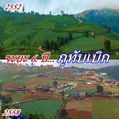 ยินดีต้อนรับสู่ 'ภูทับเบิก' แหล่งธรรมชาติที่ยับเยินของไทย!!