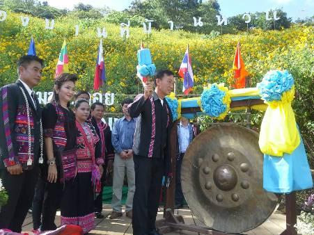 บานแล้ว! ดอกบัวตองบ้านหัวแม่คำสะพรั่งเต็มดอยชายแดนไทย-พม่า