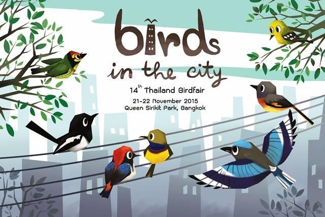 """ภาพถ่ายชนะเลิศการประกวด """"นกในเมืองและสัตว์ในเมือง""""   ชมเพลินก่อนไปร่วม  """"เทศกาลดูนกเมืองไทย ครั้งที่ 14"""""""