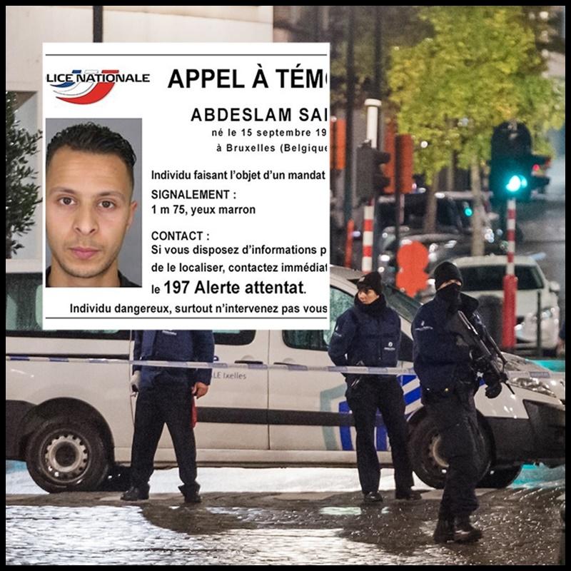gsm espion algerie