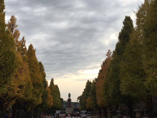 ทางเดินเข้าสู่ศาลเจ้ายะซุกุนิ ใบแปะก๊วยเปลี่ยนเป็นสีเหลือง