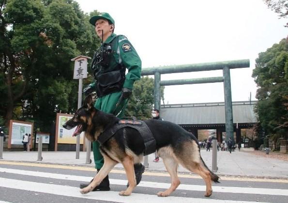 สุนัขตำรวจลาดตระเวนในกรุงโตเกียว