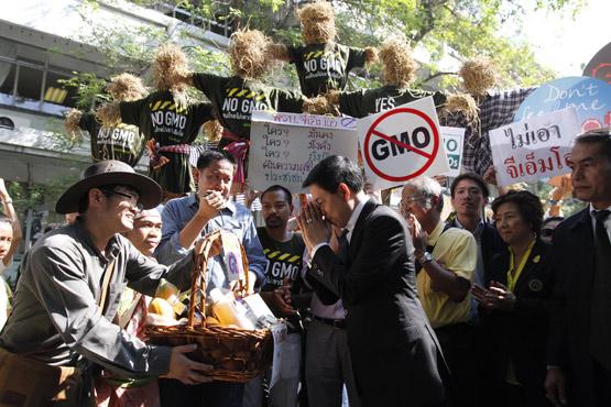 GMOs 2015 ฉิบหาย ตายเห็นๆ!