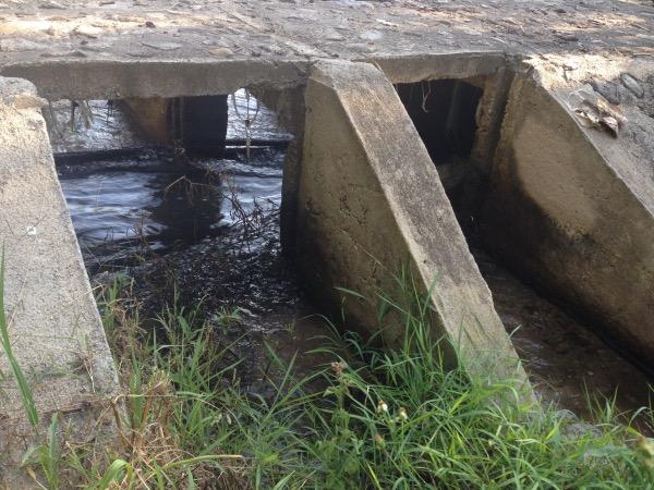 ฝายน้ำลอดน้ำล้น ถูกออกแบบให้มี 2 ช่วง สำหรับระบายน้ำหลาก และเป็นทางเดินน้ำใส