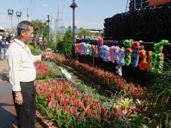 เนรมิตเมืองบุรีรัมย์! ขนดอกไม้หลากสีตกแต่ง ประดับไฟหลายหมื่นดวงรับปีใหม่