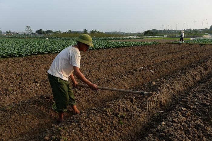 ภาพจากแฟ้มเกษตรกรเวียดนามเตรียมแปลงเพาะปลูก (AFP PHOTO / HOANG DINH NAM )