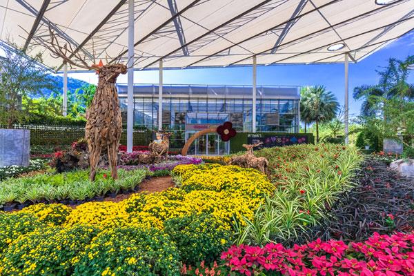 """""""ดาษดา แกลเลอรี่"""" สถานที่ท่องเที่ยวจัดแสดงดอกไม้หลากหลายสายพันธุ์"""
