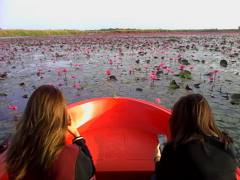 """ร้องไห้หนักมาก! นักท่องเที่ยวผิดหวัง """"ทะเลบัวแดง"""" เหมาเรือตั้ง 500 บ.ได้ดูแค่กอบัวเล็กๆ"""