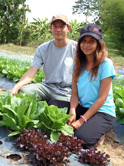 """ชีวิตที่เลือกเอง """"คู่รัก ป.โท"""" สร้างสุขจากอาชีพ 'ปลูกผักสลัดอินทรีย์'"""