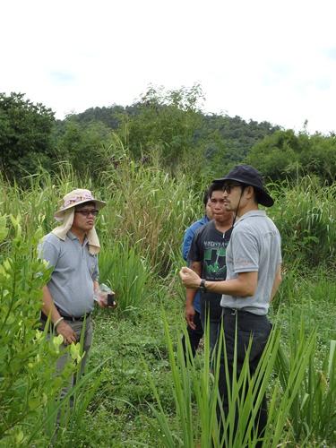 อรุษ นวราช และเจ้าหน้าที่โครงการฯ ตรวจแปลงเกษตรกรกลุ่มชุมชนป่าละอู