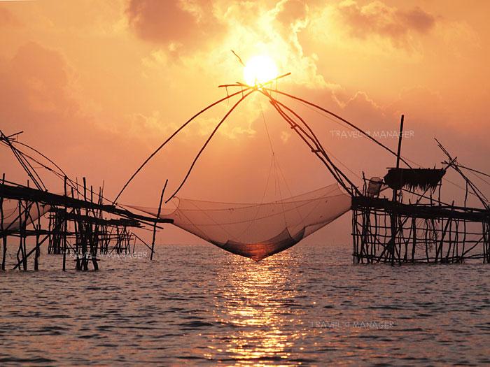 ดวงอาทิตย์ยามเช้าท่ามกลางยอยักษ์
