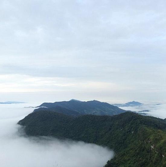 เมืองในหมอก ภูชี้ฟ้า