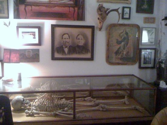 Morbid Anatomy Museum. Photo: thera T/Flickr [CC]