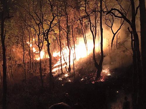 """ไฟไหม้ป่า """"ดอยสุเทพ"""" ยังลามหนัก เสียหายมากกว่า 60 ไร่แล้ว"""