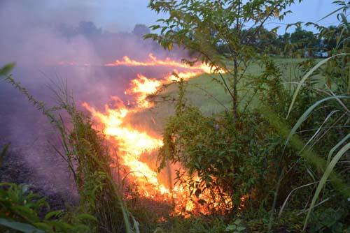 ไฟไหม้หญ้าทุ่งนาพื้นที่ ต.หนองเสม็ด ควันไฟกระจายปกคลุม รถที่สัญจรผ่านไปมาต้องใช้ความระมัดระวัง